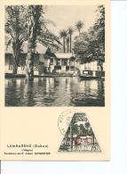 Prix-Nobel -Schweitzer -Lambarene ( CM De Monaco De 1955 à Voir) - Nobel Prize Laureates