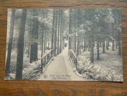 Pont Près Du Mess Des Officiers - Anno 19?? ( Zie Foto Voor Details ) !! - Elsenborn (camp)