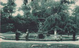 Cp , 85 , LUÇON , Le Jardin Dumaine - Lucon