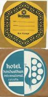 Lot De 2 étiquettes De Bagage Autoadhésives - Hôtels D´INDE - Etiketten Van Hotels