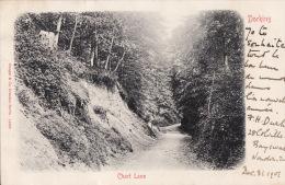 DORKING, Chart Lane, - Surrey