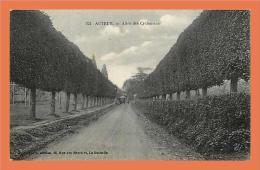AUTEUIL - Allée Des Cyclamens // CPA - France