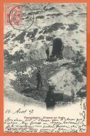 O055, Eigergletscher, Eiger, 3619, Animée, Précurseur, Circulée 1907 - BE Berne