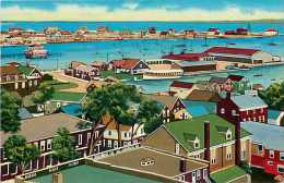 Mai13 794 : Nantucket Harbor - Nantucket