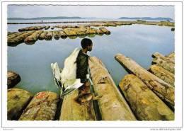 IMAGES  DU  GABON  /  RETOUR  DE  CHASSE  ( Enfant Avec Singe Et Pelican, Flottage Du Bois ) /  Edit.  Photo  J. TROLEZ - Gabon