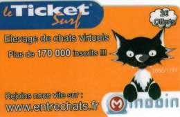 TICKET SURF FT NON GRATTE 2000 EX CHAT - Frankreich