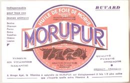 BUVARD - Produits Parmacieutiques - Laboratoire Pêcherie De Bordeaux MORUEPUR - Chemist's