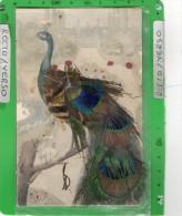 CARTE FANTAISIE PAON ( Plume De Paon ) - Oiseaux