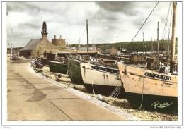 Camaret Sur Mer, Un Coin Du Port (Finistère) - Camaret-sur-Mer