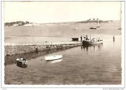 Roscanvel (Finistère) 29, Le Port, Presqu´ile De Crozon - Crozon