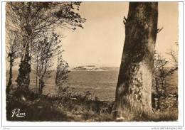 Roscanvel-Quelern (Finistère) 29, Vue Sur L´ile De Treberon, Presqu´ile De Crozon - Crozon