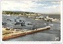 Camaret Sur Mer, Le Port - Camaret-sur-Mer