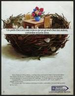 Pub Papier 1985 Banque Argent Credit Agricole CA Placement Dessin  Nid  D´oiseau Illustrateur Favre Felix - Reclame
