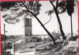 PHOTO Format CPM 13  CHATEAURENARD Le Clocher De L' église Vue Du Jardin Public - Photographs