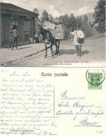 Mayens De Sion, Dépôt Des Postes, Mulet, Facteur, Postier - Poste & Facteurs