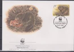 Belarus, 1995, WWF, Beaver, 4 FDC´s - Knaagdieren