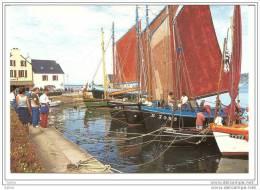 Le Fret Crozon (Finistère) 29, Rassemblement De Vieux Gréements, Presqu´île De Crozon,  édition Jos - Crozon