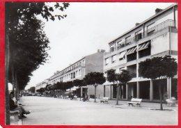 PHOTO Format CPM 13 TARASCON Rue De La République - Photos