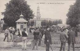 Bayeux - Le Marché Aux Petits Porcs [10814B14] - Bayeux