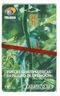 GUATEMALA Ref MV CARDS GUA-10 VALEUR Q 50 QUETZAL BIRD MINT 100 000 EX COTE 40€ - Guatemala