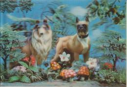 CARTOLINA STEREOSCOPICA--ANIMALI--CANI--BOXER--COLLIE--LASSIE--FUNGHI--FP--V 8-8-67 - Stereoscopische Kaarten