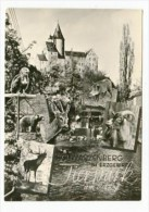 GERMANY - AK 156931 Schwarzenberg Im Erzebirge - Tierpark Am Schloß - Schwarzenberg (Erzgeb.)