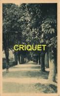 Cpa 84 St Christol D'Albion, Le Cours, Enfant En Avant, Tacot Au Fond..., Carte Pas Courante - Saint Christol