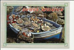 CARTOLINA DI RIVIERA ADRIATICA BARCA DA PESCA PIENA DI PESCE RETRO MACCHIATO - Rimini