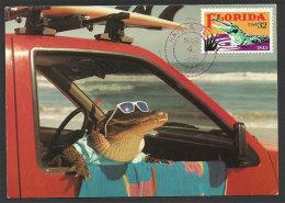 Etats Unis Florida Crocodile Carte Maximum 1996 US Florida Crocodile Maxicard - Reptiles & Batraciens