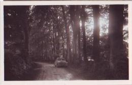 Pepinvast   190         Route De La Pernelle à Le Vast ( Jean Le Marais, Voiture )  . - Frankrijk