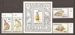 ANIMALES - BARBADOS 1989 - Yvert #748/51+H26 - MNH ** - Autres