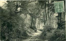 95 FORET DE CARNELLE - Chemin De La Pierre Turquoise - France