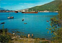 Réf : BO-13-597 : Norge   Norway  Narvik - Norwegen