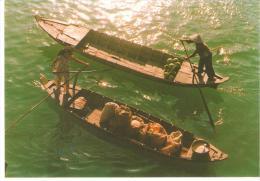 CPM QUE HUONG VIET NAM  (non Ecrite) LA RIVIERE DE CAMAU CA MAU RIVERS AND WATER BARQUES - Vietnam