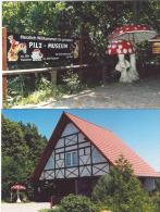 PILZ MUSEUM NEUHEIDE FUNGHI CHAMPIGNONS MUSHROOM SETAS   DUE CARTOLINE Del PILZ MUSEUM NEUHEIDE GERMANIA - Cartoline