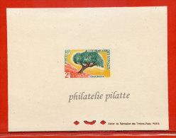 COTE DES SOMALIS N°305 EPREUVE DE LUXE DRAGONNIER,ARBRE - French Somali Coast (1894-1967)