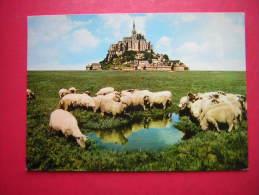 CPM  50   MONT SAINT MICHEL  MOUTONS DANS LES PRES SALES    VOYAGEE 1978 TIMBRE - Le Mont Saint Michel