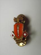INSIGNE - U.S. - PRO PATRIA VIGILANS - ORGANISATION - INSCRIPTION AU DOS : DENMARK N.Y. D22 - Militari