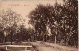 NAGYKIKINDA  NEPKERT  1919 - Serbie