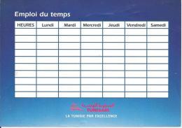 TUNIS AIR - Schulstundenplan Mit Rückseitiger Historischer Mittelmeerlandkarte (XXL-Größe) - Werbung