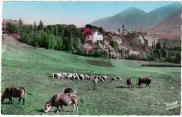 Embrun, Château De La Robeyre Et Le Roc (vaches, Moutons) - Embrun