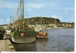 Audierne (Finistère) 29 - Un Coin Du Port, édition Jean Audierne - Audierne