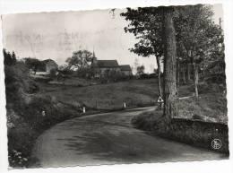 24558  -    Custinne  Entrée  Du  Village - Gedinne