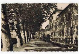 "CERET :  "" Le Collège Moderne Et L' Avenue "" - Ceret"