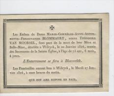 Blommaert Marie Vve Van Moorsel Théodore,  Wilryck 20-1-1824 - Obituary Notices