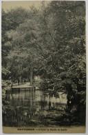 91 : Montgeron - L´Yerre Au Moulin De Senlis - Plan Inhabituel - Montgeron