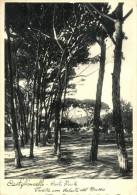 Castiglioncello - Pineta Con Veduta Del Museo - Livorno
