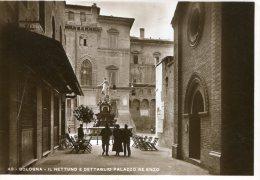 Bologna - Il Nettuno E Dettaglio Palazzo Re Enzo - Bologna