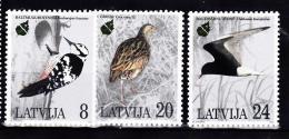 LETTONIE 1995 OISEAUX 363 A 365  MNH - Lettonie