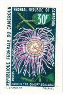 Cameroun    N° 481 Et 482** N.D.  Neuf Sans Charniere - Camerun (1960-...)